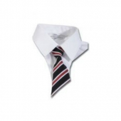 school disco ties