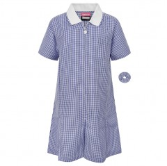 blue gingham summer school dress