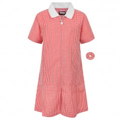 a line gingham dress (button style) - large sizes