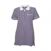 frant school navy gingham dress.